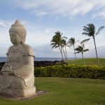 JMcNeils Hawaii